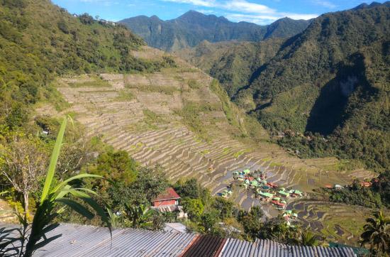Batad pirinç tarlaları luzon adası
