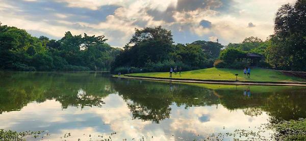 singapur botanik bahçesi gezilecek yerler gezi rehberi
