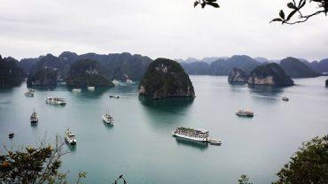 vietnam gezilecek yerler, ha long koyu hakkında bilgiler