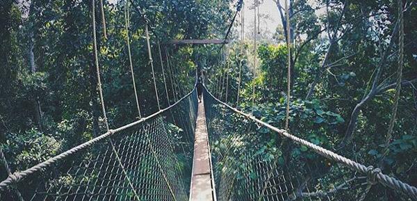 taman negara milli parkı