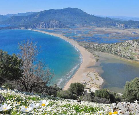 tatil yapılacak yerler iztuzu plajı dalyan muğla
