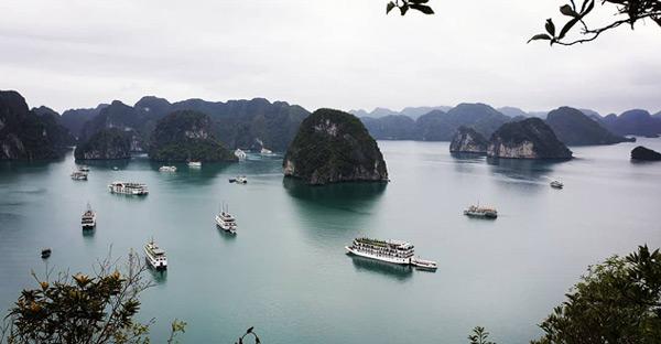 vietnam gezilecek yerler hakkında bilgiler ha long koyu gezi rehberi