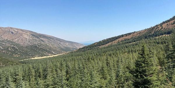 şarkikaraağaç kızıldağ milli parkı nasıl bir yer