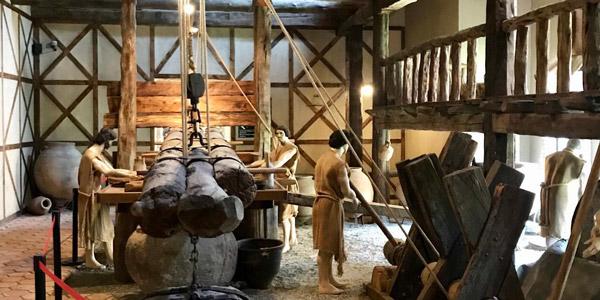 Oleatrium Zeytin ve Zeytinyağı Müzesi nasıl gidilir Kültür Gezisi